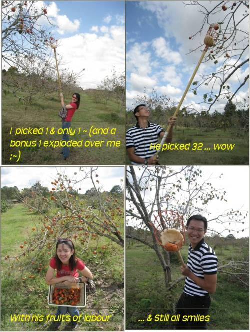 joys-bk-orchard